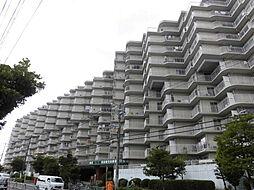 エバーグリーン淀川4号館[107階]の外観