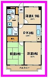 神奈川県川崎市多摩区中野島3丁目の賃貸マンションの間取り