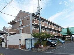 滋賀県守山市伊勢町の賃貸マンションの外観