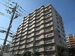 北淀宝ハイツカトレア[12階]の外観