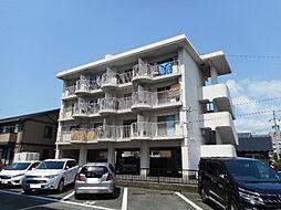 ハイツ松島[303号室]の外観
