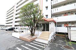 鶴亀コーポ[503号室]の外観