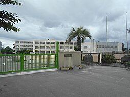 第五向陽小学校