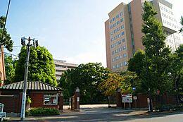 大学日本女子大学通信教育課程まで144m