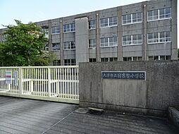 日吉台小学校/...