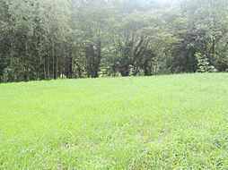 静かな環境の土...