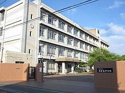 飾磨東中学校