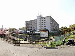 鶴川ハイツ 歩6分