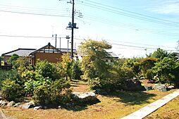 母屋の南庭です...