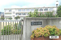 白鳥小学校 1250m