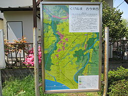 桜小路公園