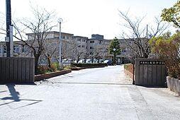 生浜中学校 約...