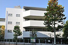 小学校 港区立赤坂小学校まで700m 徒歩9分