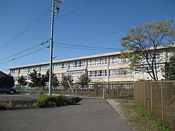 犬山中学校