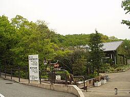 北山公園(92...