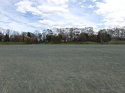 緑ヶ丘公園 多...