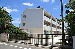 学区 湘洋中学...