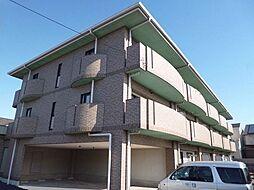 大阪府藤井寺市津堂1丁目の賃貸マンションの外観