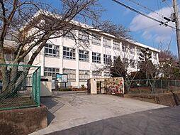 あやめ池小学校
