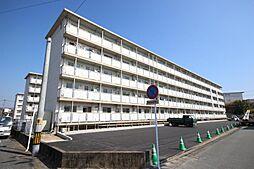 コンチェルト東合川I[307号室]の外観
