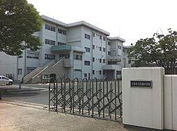 菖蒲中学校徒歩...