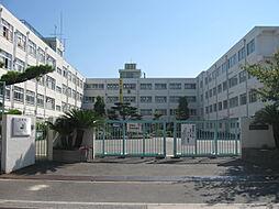 第十中学校
