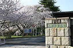 京都府京都市伏見区京町大黒町の賃貸マンションの外観