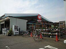 ホームセンターコメリハード&グリーン 武蔵村山中央店まで2210m