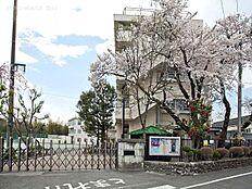 羽村市立羽村東小学校 距離900m