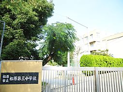 松原第三中学校