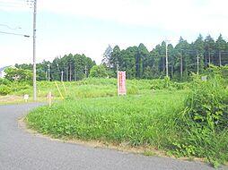 緑に囲まれた土...