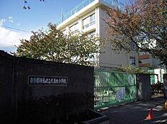 小学校練馬区立 大泉北小学校まで977m