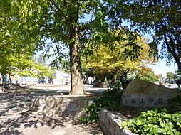 西山中公園