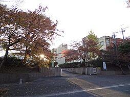 唐崎中学校 1...