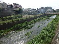 遊歩道に面する河川も水が綺麗で気持ちの良い川です。