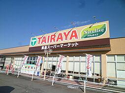 TAIRAYA...