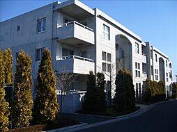 茨城県古河市下山町の賃貸マンションの外観