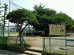 公園北朝霞公園...