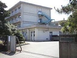 松ヶ丘中学校ま...