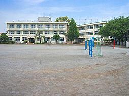 南第一小学校