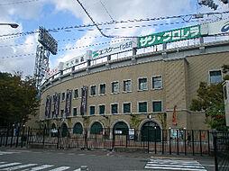 阪神甲子園球場...