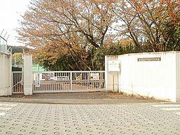 真光寺中学校ま...