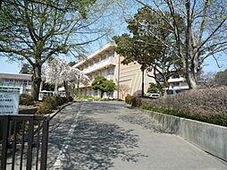 見川小学校