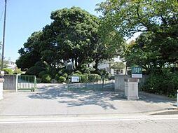 井田小学校
