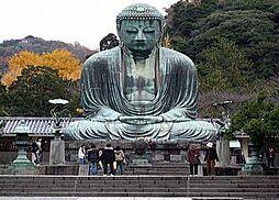 文化財鎌倉大仏...