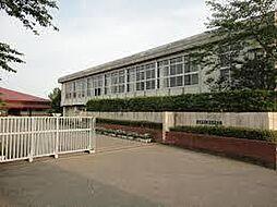 学区:都和中学...