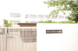 浅香山小学校 ...