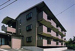 レ・サントレ[2階]の外観