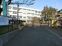山田小学校約1...