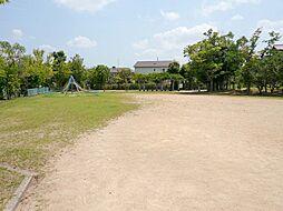 近隣公園です。